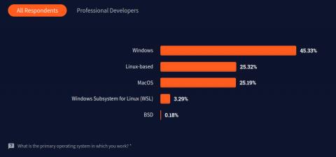 StackOverflow Survey 2021 all respondents