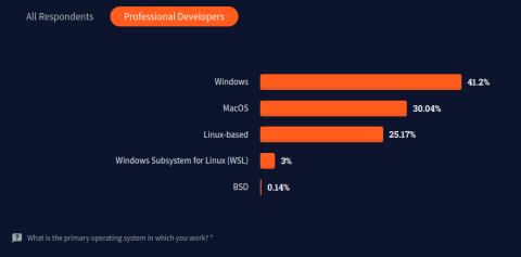 StackOverflow Survey 2021 developers