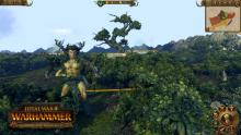 Total War: WARHAMMER Realm of the Wood Elves